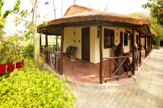 Ashokas Tiger Trail Resort